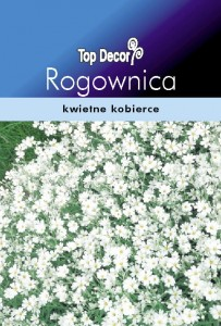 ROGOWNICA SNOW IN SUMMER